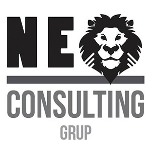 Logo NEO Consulting